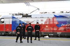Railway Security Service Royalty Free Stock Photo