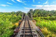 Railway from Singapore to Bangkok in the jungle of Malaysia. Railway from Singapore to Bangkok in the jungle of Malaysia royalty free stock photo