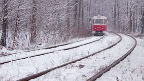 Railway in snowy  forest stock video