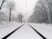 Railway in a snowy forest. Gloomy winter day. Railway passes through bare tree forest and reaches the horizon. Everything is covered by thick snow Stock Images