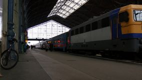 Railway Station. Inside of the main railway station with trains, people and luggage stock video