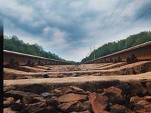 Railway. In summer Stock Photos