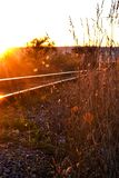 Railway at sunset stock photo