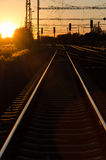 Railway in sunset Royalty Free Stock Photos