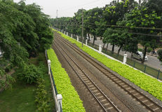 Railway surrounded by bushes on side of the street photo taken in Jakarta Indonesia Royalty Free Stock Photo