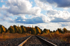 Railway to the forest Stock Image