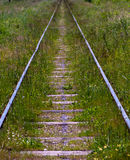 Railway track Royalty Free Stock Photography