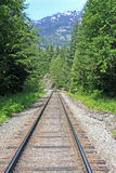 Railway Track. In the Canadian mountains Stock Photos