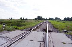 Railway track cross road between fields and forest Royalty Free Stock Photography