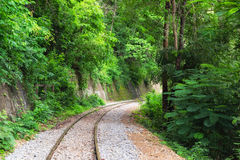 Railway track curve in verdant rainforest Royalty Free Stock Photos