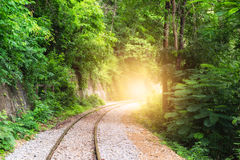 Railway track curve in verdant tropical rainforest Royalty Free Stock Photography