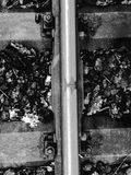Railway track detail from above and autumn leafs in black and white stock photo