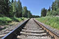 Railway track in forest Stock Image