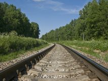 Railway track in the forest Stock Photography