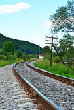 Railway track in a green forest Royalty Free Stock Image