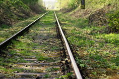 Railway track in the haze Royalty Free Stock Image