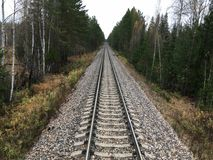 Railway track in the middle of the forest stock image