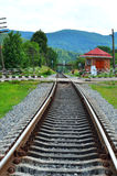 Railway track near the green forest Royalty Free Stock Image