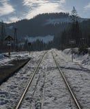 Railway track near village Dedinky Royalty Free Stock Photos