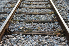 Railway Track. Overgrown With Weeds at Sunset Stock Photography