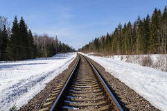 Railway track in spring forest Royalty Free Stock Photo