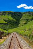 Railway Track Straight Mountains. This portion of railway line heads straight towards a mountain  covered in trees and vegetation. Vertical framed color image Stock Photos