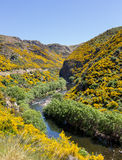 Railway track up Taieri Gorge New Zealand Stock Photos