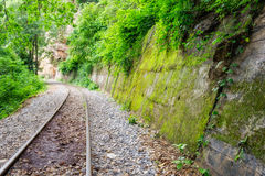 Railway track in verdant tropical forest Stock Photos