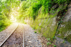 Railway track in verdant tropical rainforest Stock Images