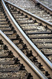 Railway tracks. In a summer day Stock Photography