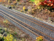 Railway tracks. Railroad tracks, top view Royalty Free Stock Photos