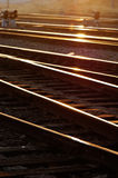 Railway Tracks. Beamed by a tail of morning sunlight in dawn Royalty Free Stock Photos