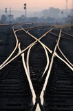 Railway Tracks in Dawn Stock Photos