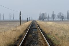 Railway tracks. On a dried field and a foggy background royalty free stock photography