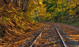 Railway tracks with fall foliage. Sunlight filtering through the trees highlights the fall foliage on railway tracks curving around a bend on the Western stock images