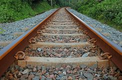 Railway tracks flanked by coastal vegetation. View of railway line, sleepers and gravel in coastal region, lined by green vegetation stock photo
