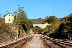 Railway tracks going under concrete bridge surrounded with gravel and railway switch mechanism with signal lights and dense trees. On each side on clear blue royalty free stock images