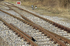 Railway tracks Royalty Free Stock Images