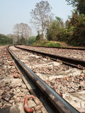 Railway Tracks In Natural Setting Royalty Free Stock Image