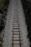 Railway tracks on a uniform background. Stock Photography