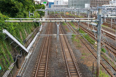 Railway tracks. View from above. Railroad trackage Royalty Free Stock Image