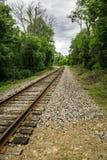 Railway Tracks Through the Woods Stock Image