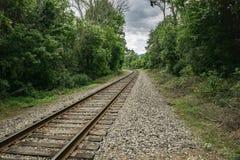 Railway Tracks Through the Woods Royalty Free Stock Image