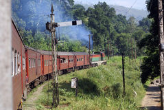Railway, train and semafor Stock Images