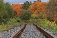 Railway or tramway track in a beautiful autumn park fog. dampness, bright warm autumn colors Stock Image