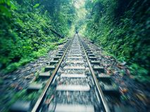 Railway in tropical forest (rainforest jungle) with green vegetation and motion. Antique railway in tropical forest (rainforest jungle) with Royalty Free Stock Image