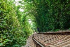 Railway Tunnel Stock Photography