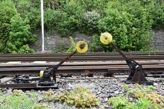 Railway turnout pendulum. Stock Photos