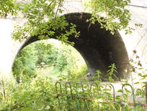 Railway viaduct arch Catcliffe Rotherham. Disused railway viaduct arch trees and vegitation Royalty Free Stock Photo