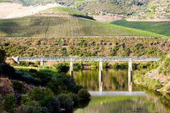 Railway viaduct in Douro Valley. Portugal Royalty Free Stock Image